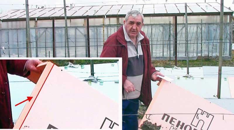 Итоги зимовки винограда под Пеноплэксом. Надежность Пеноплэкса